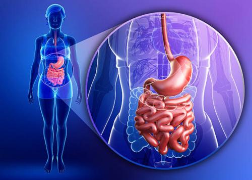 Virtual Gastric Banding